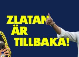 Sveriges trupp till VM-kvalet